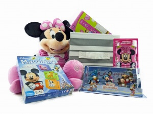 Minnie's have fun and grow crate